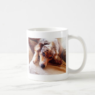 I Love Mini Aussie!  Sweet Starr! Coffee Mug