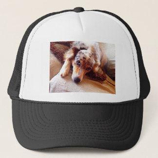 I Love Mini Aussie!  Sweet Starr! Trucker Hat