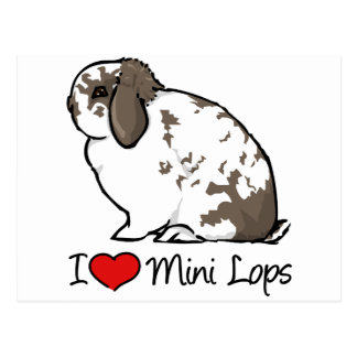 I Love Mini Lop Rabbits Postcard