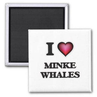 I Love Minke Whales Magnet