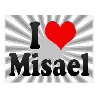 I love Misael Postcard