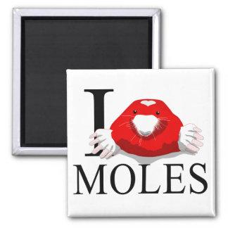 I Love Moles Magnets