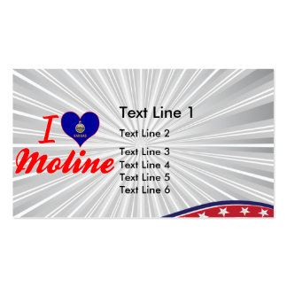 I Love Moline, Kansas Double-Sided Standard Business Cards (Pack Of 100)