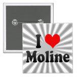 I Love Moline, United States Pin