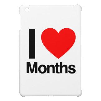 i love months iPad mini case