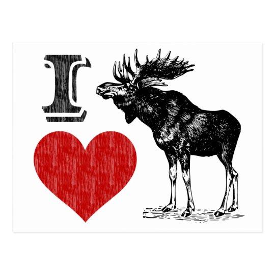 I Love Moose Postcard