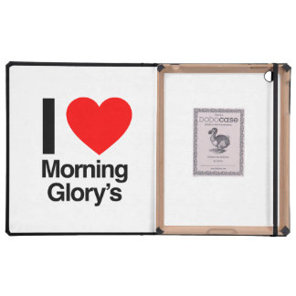 i love morning glory's cases for iPad