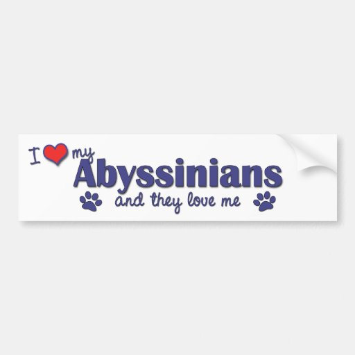 I Love My Abyssinians (Multiple Cats) Bumper Stickers