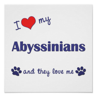 I Love My Abyssinians Multiple Cats Posters