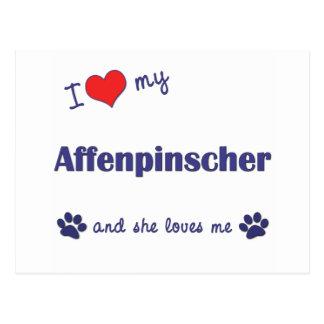 I Love My Affenpinscher (Female Dog) Postcard
