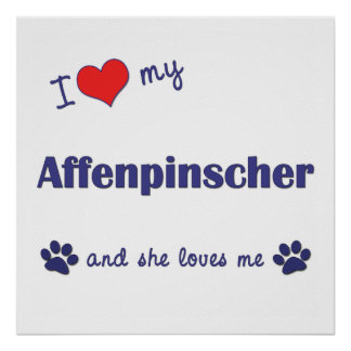 I Love My Affenpinscher Female Dog Posters