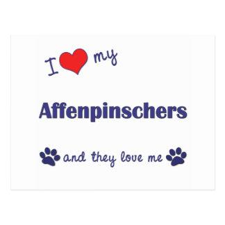 I Love My Affenpinschers (Multiple Dogs) Postcard