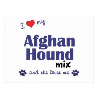 I Love My Afghan Hound Mix (Female Dog) Postcard