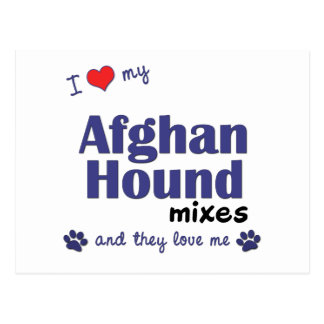 I Love My Afghan Hound Mixes (Multiple Dogs) Postcard