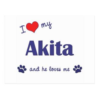 I Love My Akita (Male Dog) Postcard