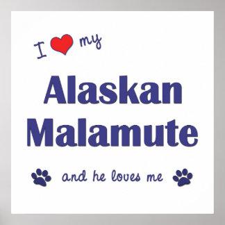 I Love My Alaskan Malamute (Male Dog) Poster