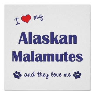 I Love My Alaskan Malamutes (Multiple Dogs) Print
