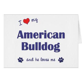 I Love My American Bulldog (Male Dog) Greeting Cards
