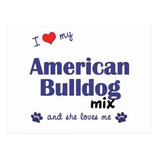 I Love My American Bulldog Mix (Female Dog) Postcard