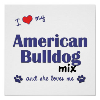 I Love My American Bulldog Mix (Female Dog) Poster