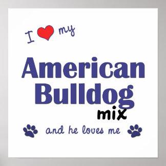 I Love My American Bulldog Mix (Male Dog) Poster