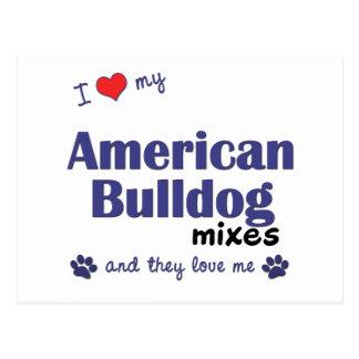 I Love My American Bulldog Mixes (Multiple Dogs) Postcard