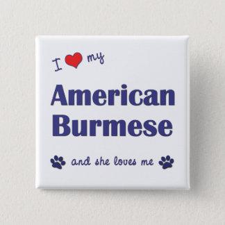 I Love My American Burmese (Female Cat) Button