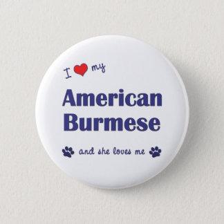 I Love My American Burmese (Female Cat) Pinback Button