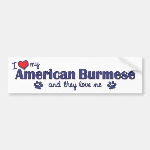 I Love My American Burmese (Multiple Cats) Bumper Sticker