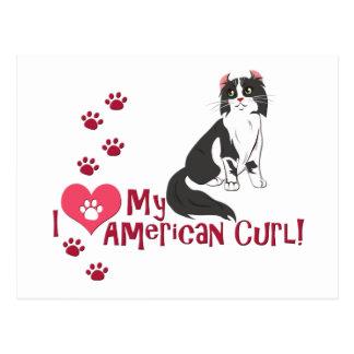 I Love My American Curl! Postcard