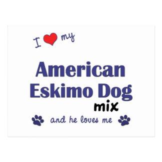 I Love My American Eskimo Dog Mix (Male Dog) Postcards
