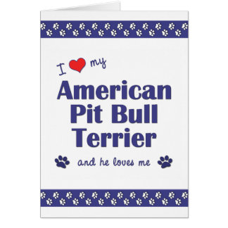 I Love My American Pit Bull Terrier Male Dog Greeting Cards