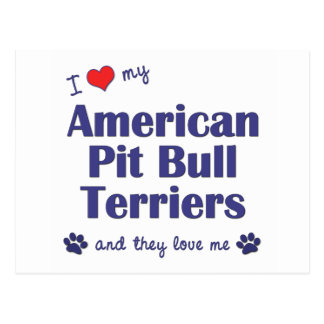 I Love My American Pit Bull Terriers (Multi Dogs) Postcard