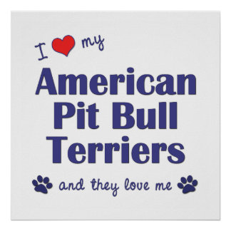 I Love My American Pit Bull Terriers (Multi Dogs) Poster