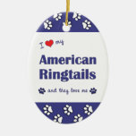 I Love My American Ringtails (Multiple Cats) Ornaments