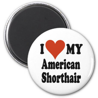 I Love My American Shorthair Cat Merchandise Magnet