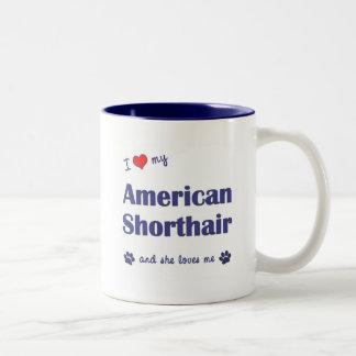 I Love My American Shorthair (Female Cat) Coffee Mugs