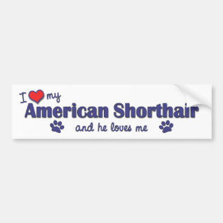 I Love My American Shorthair (Male Cat) Bumper Sticker