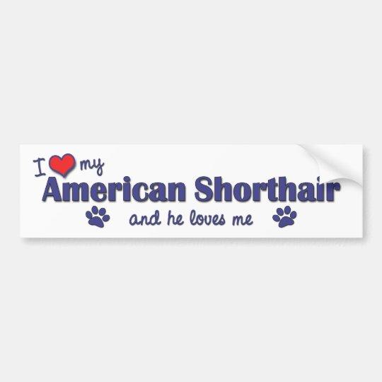 I Love My American Shorthair (Male Cat) Bumper Sticker