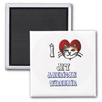 i love my american wirehair 2 inch square magnet