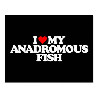 I LOVE MY ANADROMOUS FISH POST CARDS