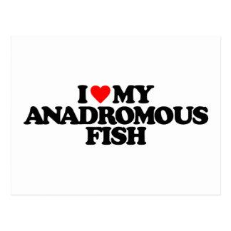 I LOVE MY ANADROMOUS FISH POSTCARD