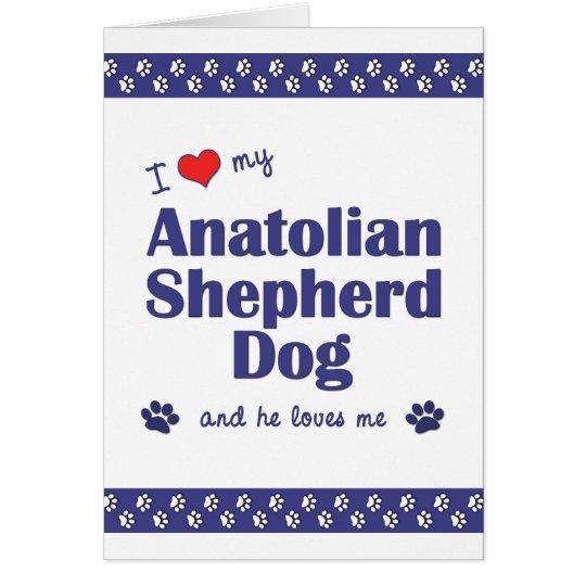 I Love My Anatolian Shepherd Dog (Male Dog) Card