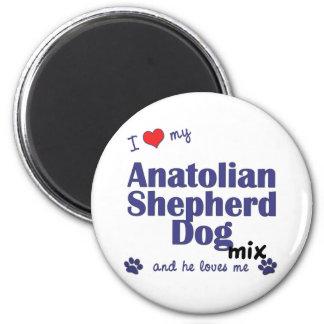I Love My Anatolian Shepherd Dog Mix (Male Dog) 2 Inch Round Magnet