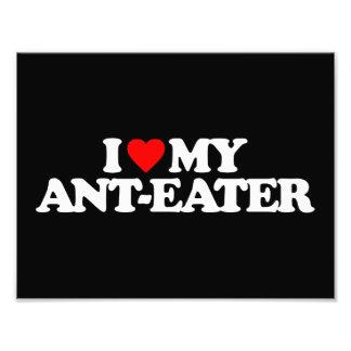 I LOVE MY ANT-EATER PHOTO PRINT