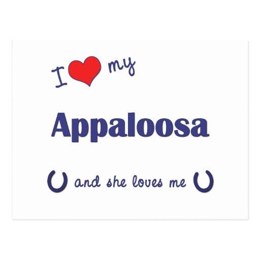I Love My Appaloosa (Female Horse) Post Cards