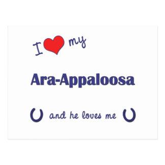 I Love My Ara-Appaloosa (Male Horse) Postcard
