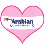 I Love My Arabian (Male Horse) Cut Outs