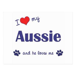 I Love My Aussie (Male Dog) Postcard