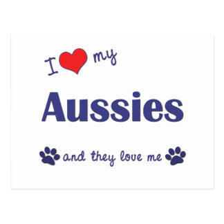 I Love My Aussies (Many Dogs) Postcard